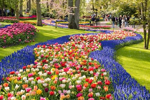 PROMO_Keukenhof Gardens shutterstock_277574795