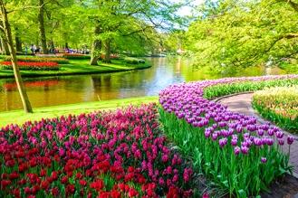 PROMO_Keukenhof Gardens shutterstock_428157550