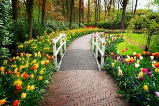 PROMO_Keukenhof Gardens shutterstock_608963747