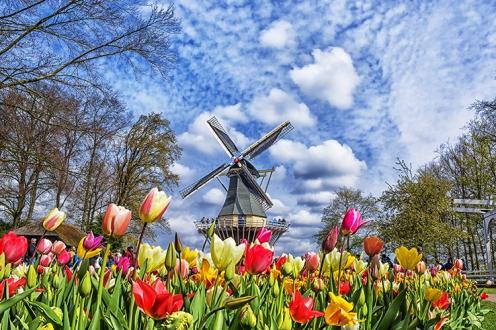 Spring Gardens Keukenhof shutterstock_546097630