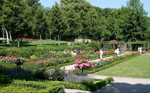 RosengartenBern02-1-e1546440437738.jpg