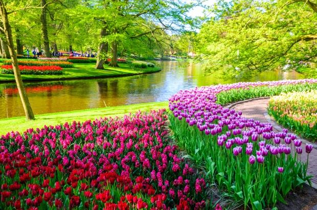 Keukenhof Gardens shutterstock_428157550.jpg